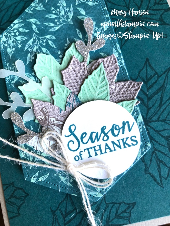 Come to Gather - Close Up Pretty Peacock - Stitched Nested Label Dies - Mary Hanson - Up North Stampin'