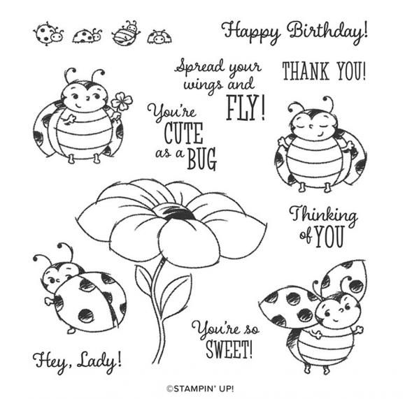 Little-Ladybug-Host-Set-Stampin-Up-Brian-King-600x657