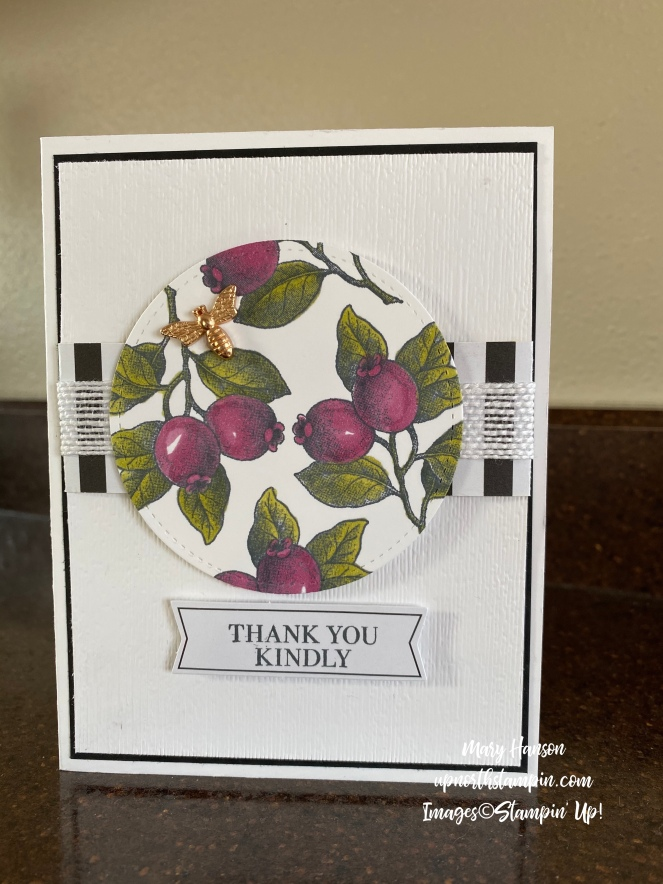 Botanical Prints Medley - 2 - Rich Razzleberry - Mary Hanson - Up North Stampin' - Stampin' Up!