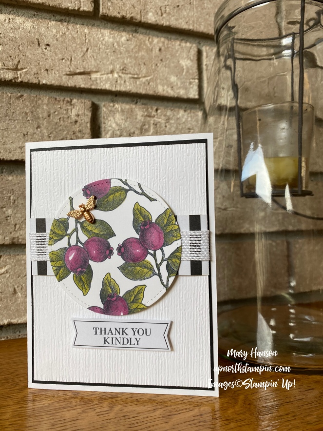 Botanical Prints Medley - Rich Razzleberry - Mary Hanson - Up North Stampin' - Stampin' Up!