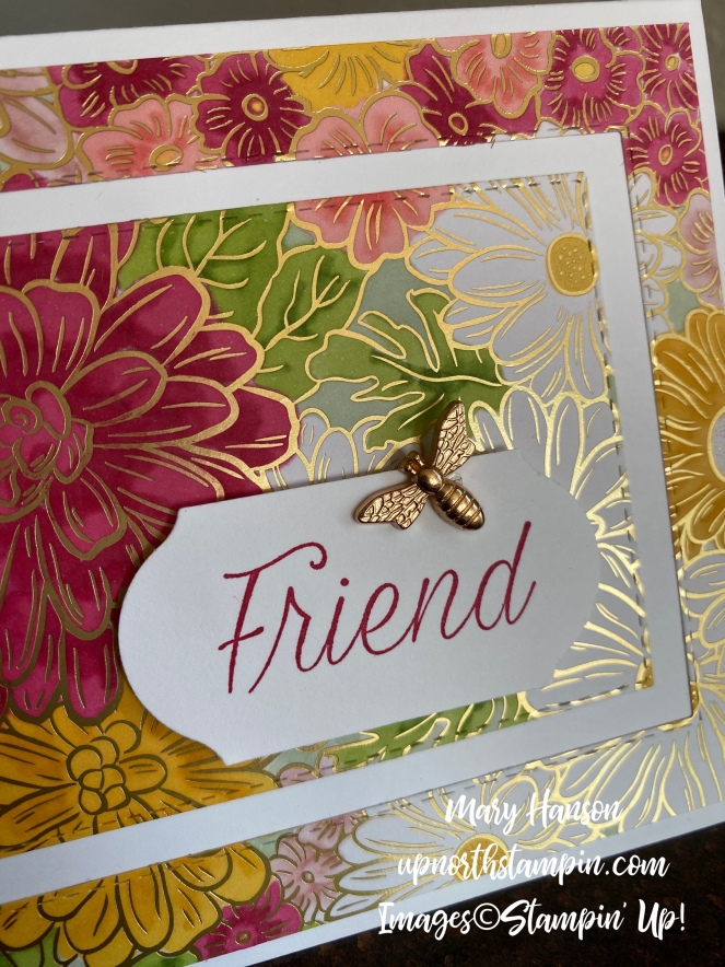 Ornate Gardens Designer Series Paper - Close Up - Daisy Lane - Mary Hanson - Up North Stampin'