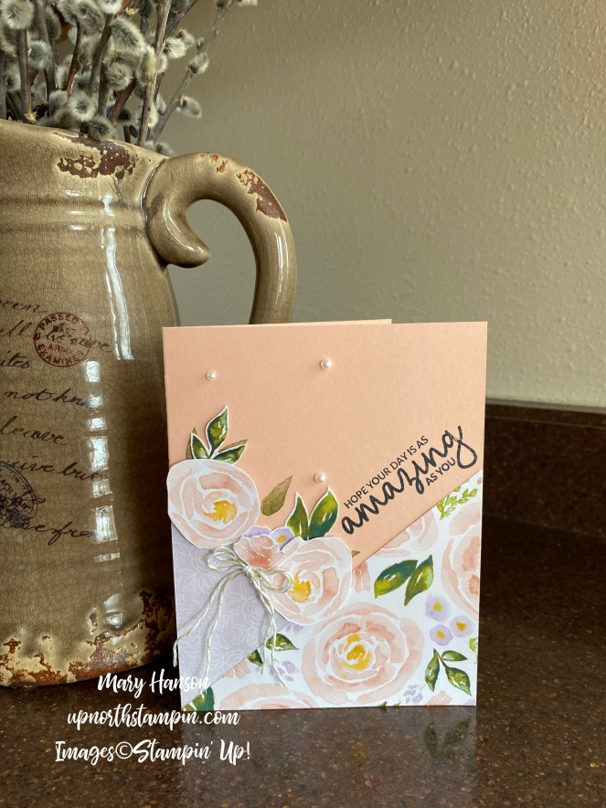 Best Dressed Designer Series Paper - Incredible Like You - Petal Pink - Mary Hanson - Up North Stampin'