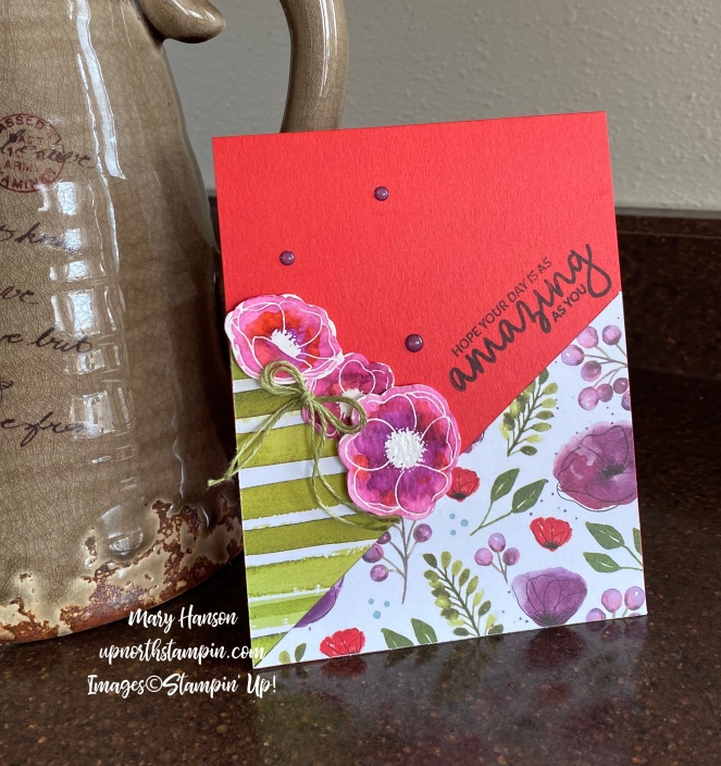 Peaceful Poppies Designer Series Paper - Incredible Like You - Peaceful Poppies Elements - Mary Hanson - Up North Stampin'