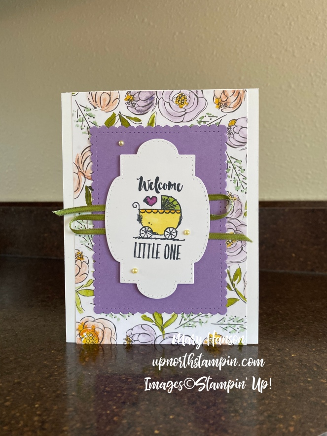 Witty-cisms - Alyssa Card - Best Dressed Designer Series Papers - Suite Sayings Framelits Dies - Mary Hanson - Up North Stampin'