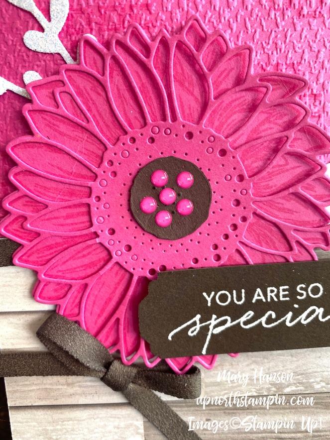 Celebrate Sunflowers - Close - Tasetful Touches - Mary Hanson - Up North Stampin'
