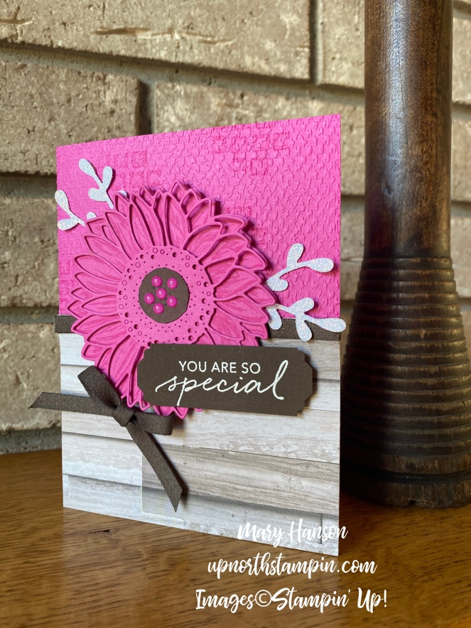 Celebrate Sunflowers - Lovely You Bundle - Magenta Madness - Mary Hanson - Up North Stampin'