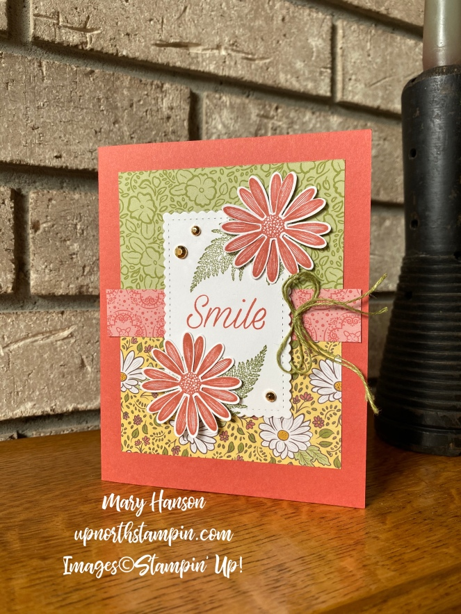 Double Wonder Card #2 - Mary Hanson - Up North Stampin'