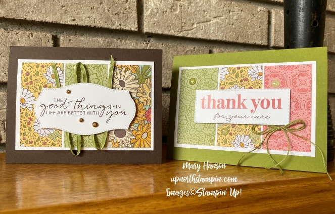 Double Wonder Cards #3 - Mary Hanson - Up North Stampin'