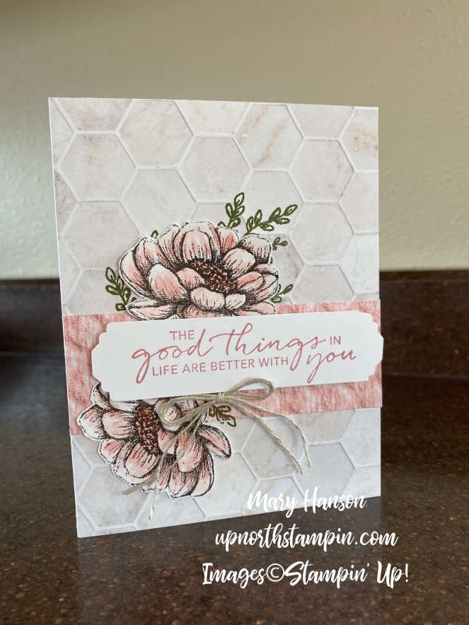 Tasteful Touches Bundle - 2 - Mary Hanson - Up North Stampin'