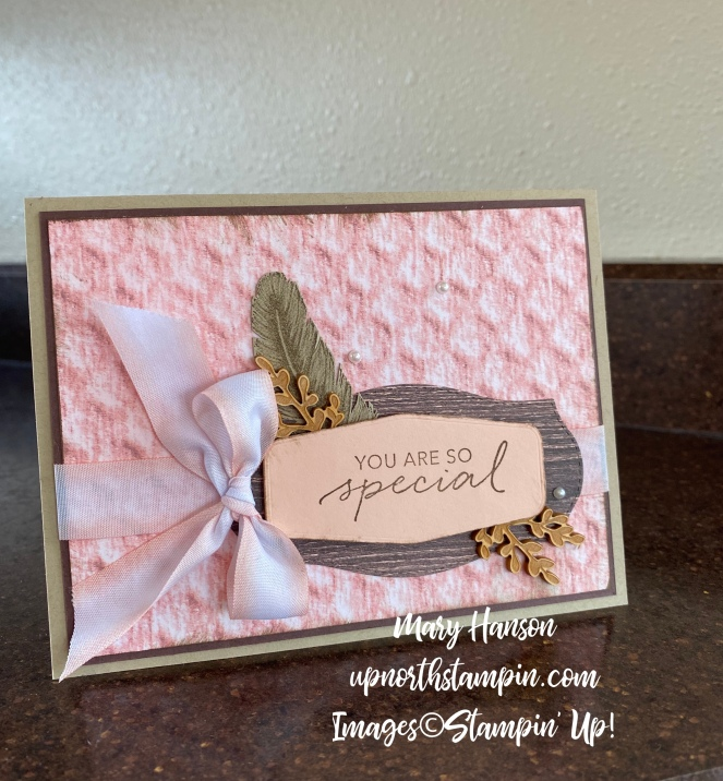 Tasteful Touches Bundle - Mary Hanson - Up North Stampin'